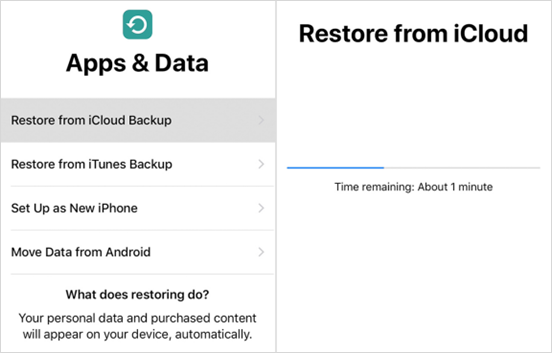 Recover iPhone/iPad Data after Factory Settings Restore