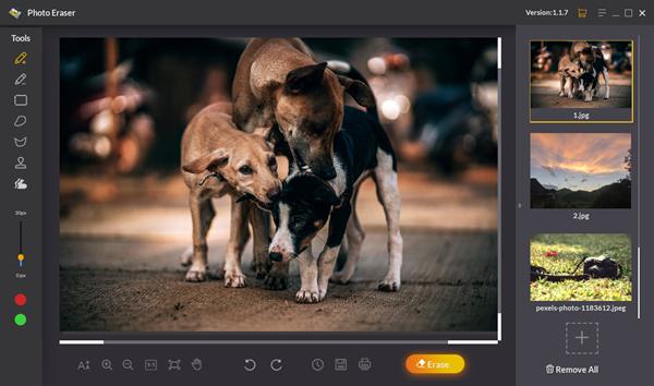 Jihosoft Photo Eraser is one of Windows Photos Alternatives to View Photos on Windows 10.