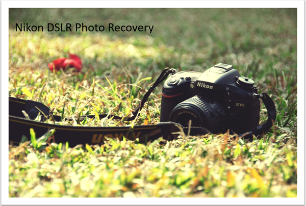 Nikon DSLR (JPEG and NEF) Photo Recovery Software