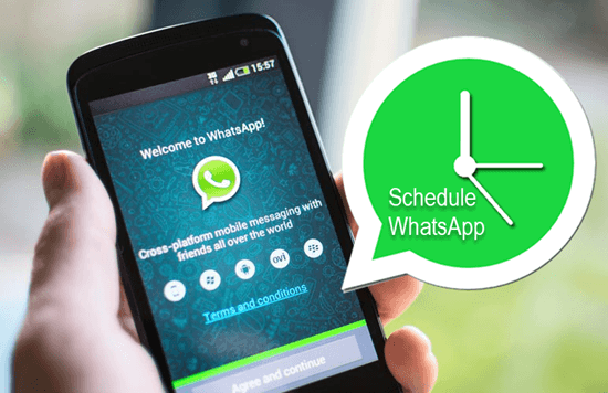 Send Scheduled WhatsApp Messages on Android and iPhone
