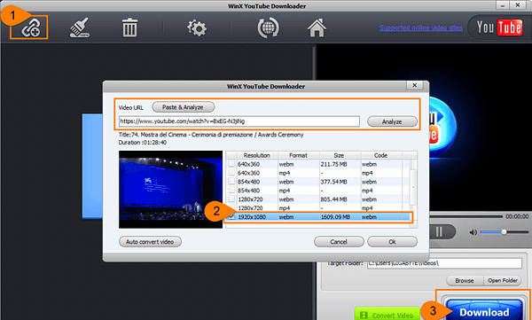 How to download YouTube videos via WinX Downloader