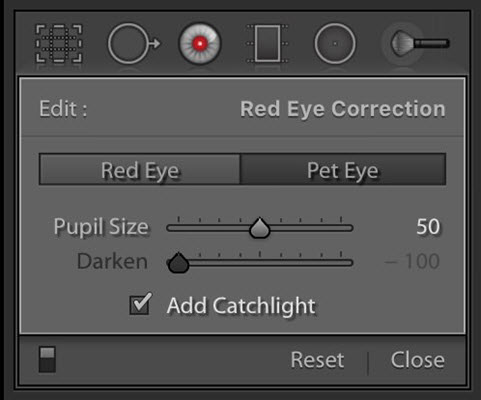 How to Remove Red Eye in Lightroom