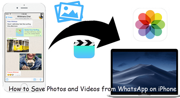How to Save Photos and Videos from WhatsApp on iPhone