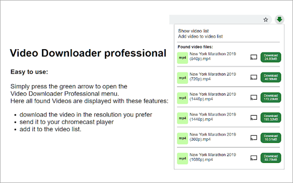 Video Downloader Professional to download videos from Any website.