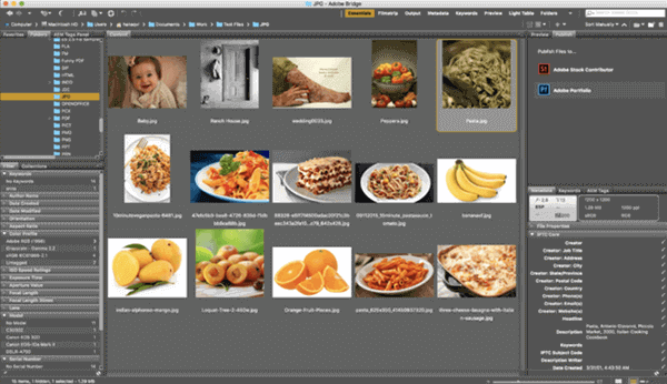 Another one of the best photo organizing software for Mac users is Adobe Bridge.