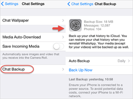 Backup WhatsApp messages on iPhone