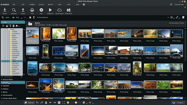I would like to present at first in this list of the best Windows 10 picture manager software is Magix Photo Manager.