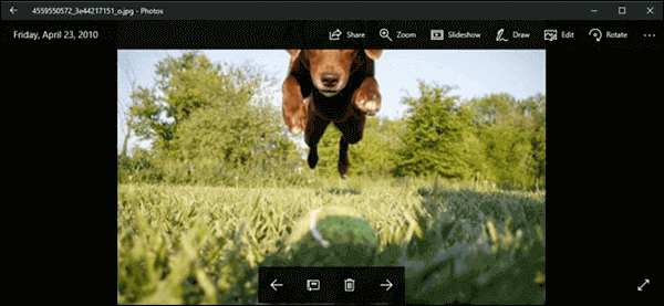 How to crop a picture in Windows 10?