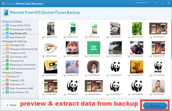 Extract data from backup selectively