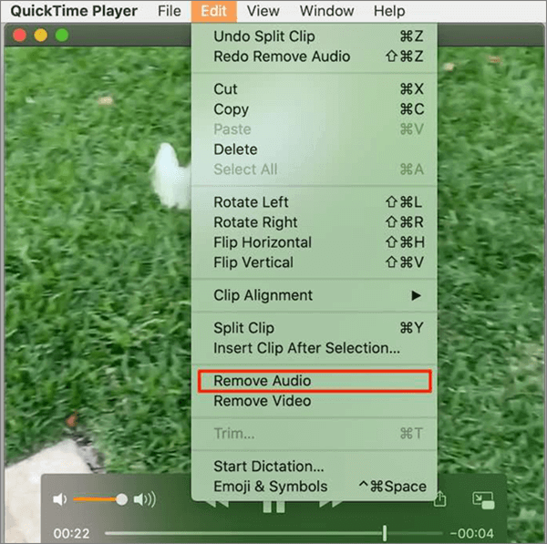 If you don't like iMovie, surely the QuickTime Player is the best alternative.